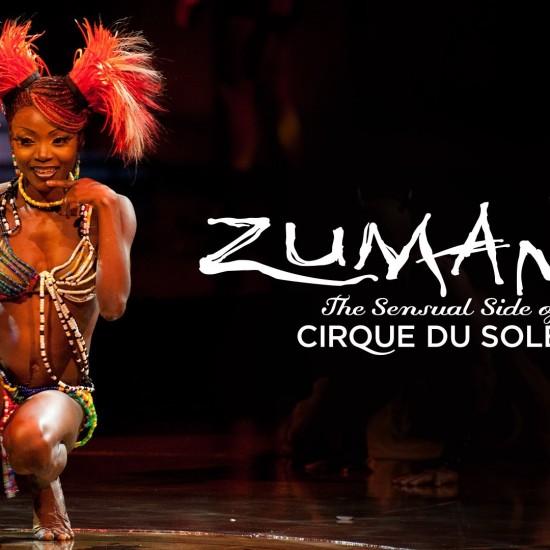 Cirque du Soleil DVD authoring project
